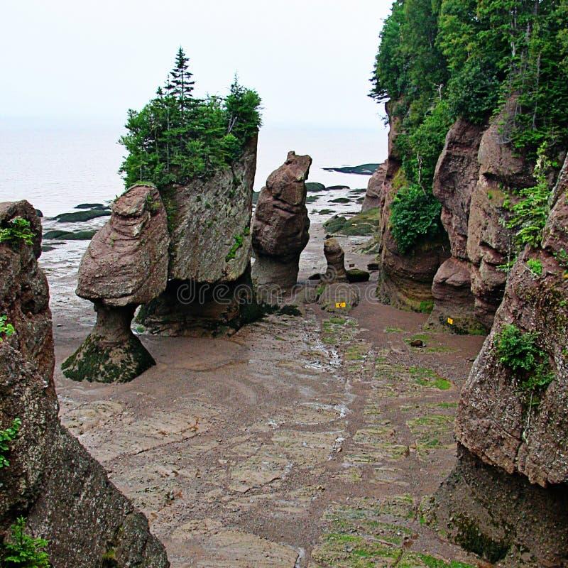 Mooi zandig strand met rotsen royalty-vrije stock afbeeldingen