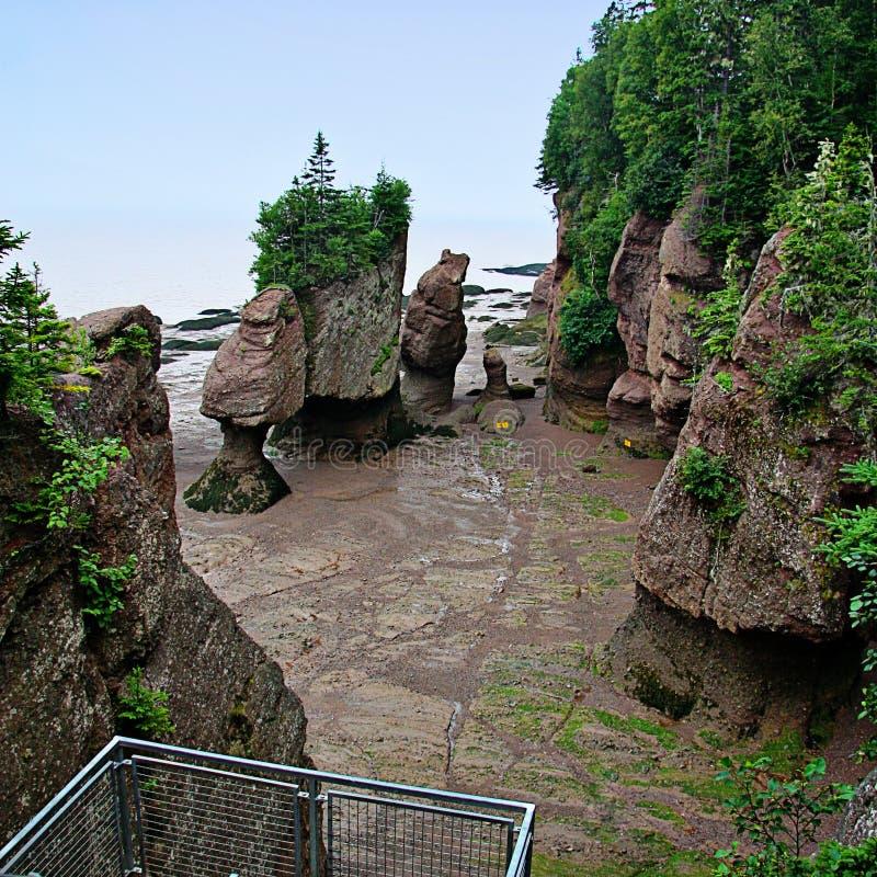 Mooi zandig strand met rotsen stock foto's