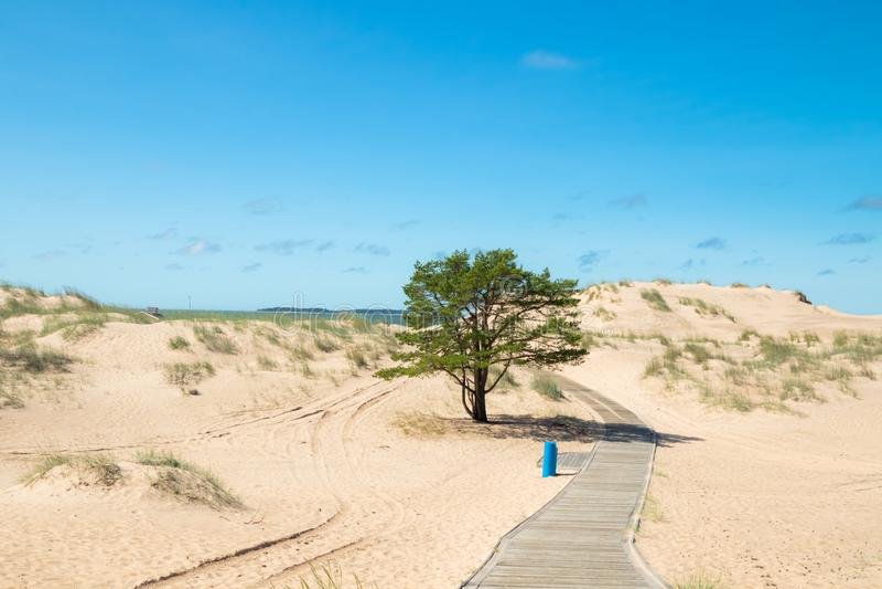 Mooi zandig strand Yyteri bij de zomer, in Pori, Finland royalty-vrije stock afbeeldingen