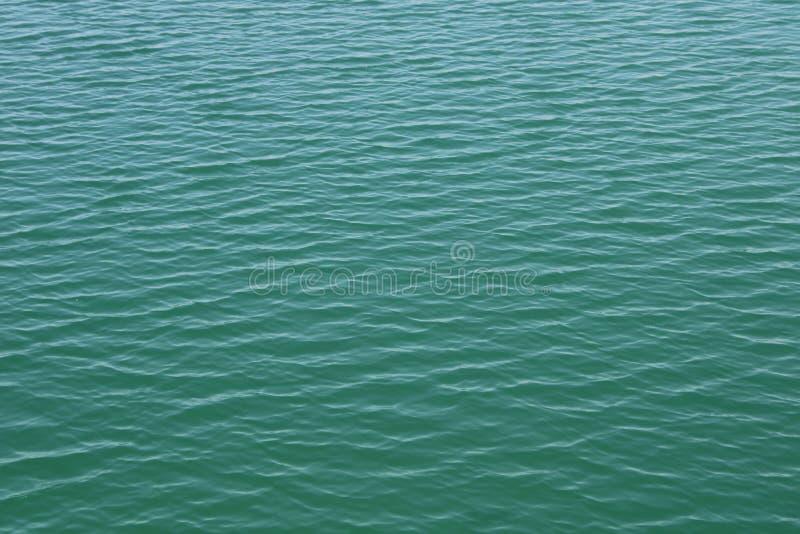 Mooi zoet water stock fotografie