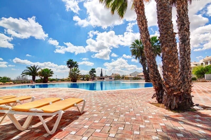 Mooi zwembad met palmen. stock afbeelding