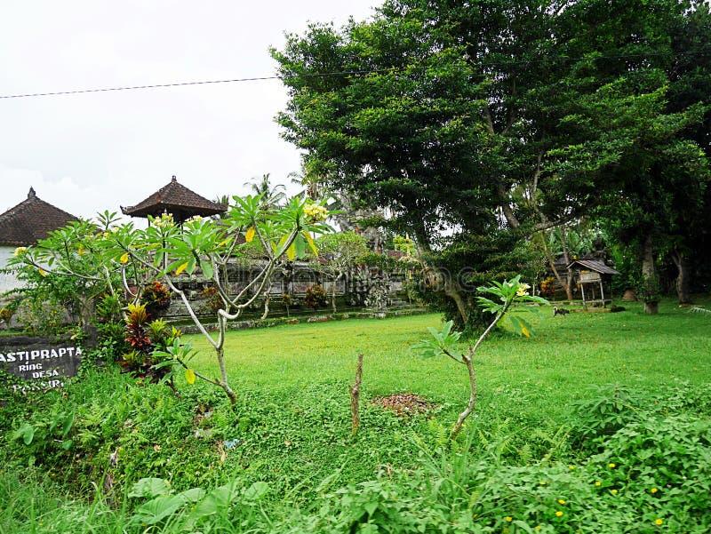 Mooie aard in Bali royalty-vrije stock fotografie