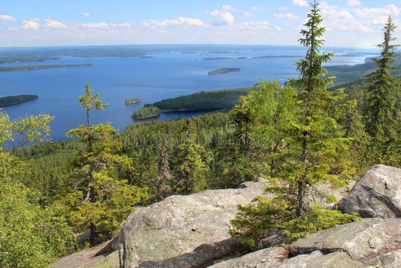 Mooie aard van Finland, Koli stock afbeeldingen