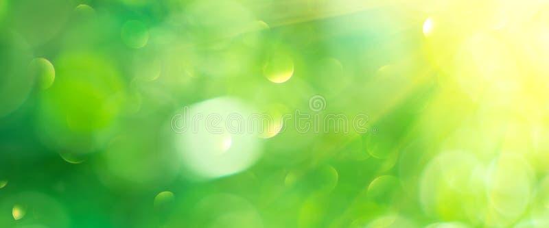 Mooie aardsamenvatting vage achtergrond Groene bokehachtergrond De zomer of de lenteachtergrond met zongloed stock afbeelding