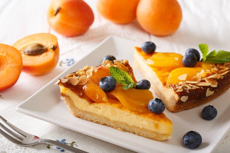 Mooie abrikozenkaastaart met bosbessen, munt en noten CLO stock afbeelding
