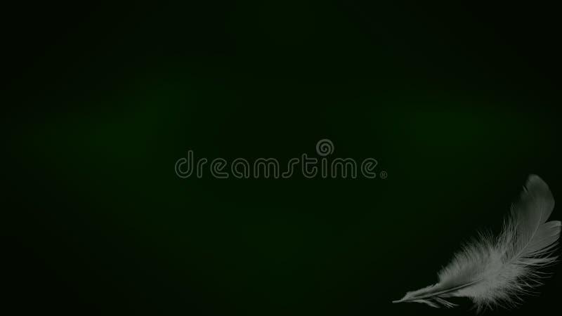 Mooie abstracte golflijnen op de donkere gradiëntachtergrond stock foto's