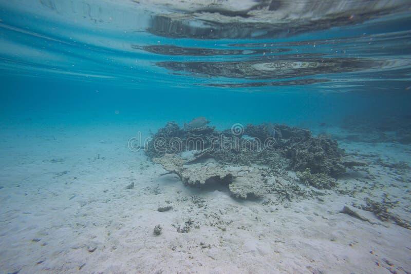 Mooie abstracte textuur als achtergrond van onderwatermening van witte zandbodem en blauw water Het snorkelen, stock foto