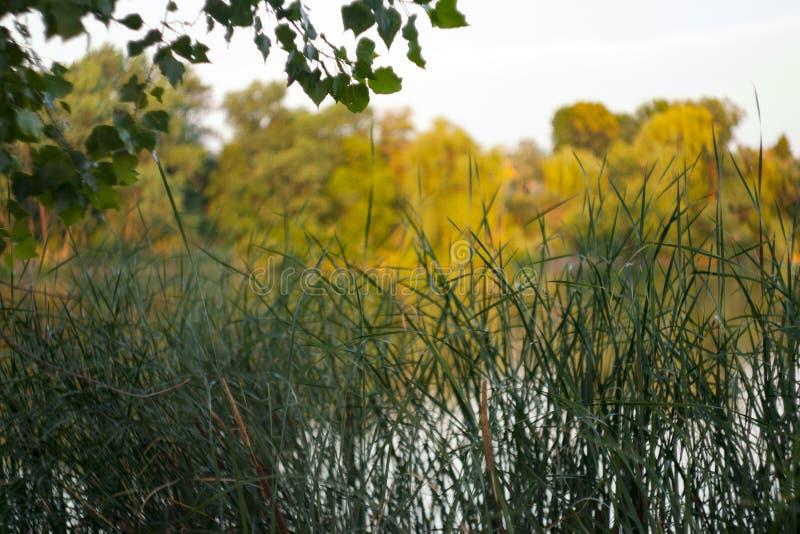 Mooie achtergrond bij een reservoir met onduidelijk beeld royalty-vrije stock fotografie