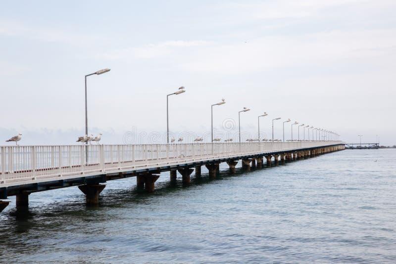 Mooie achtergrond van een pijler met zeemeeuwen, kalme overzees en blauwe hemel stock afbeelding