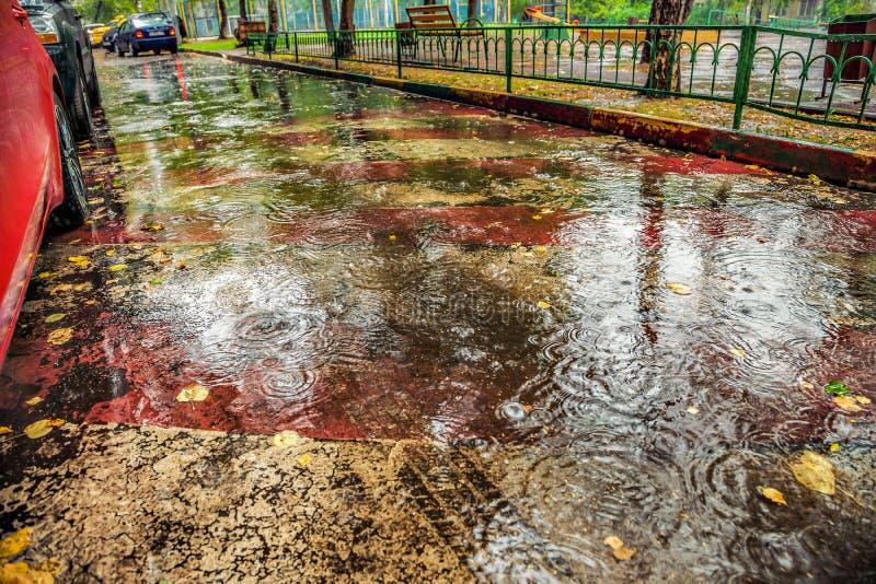 Mooie achtergrond van nat asfalt met regendruppels stock foto's