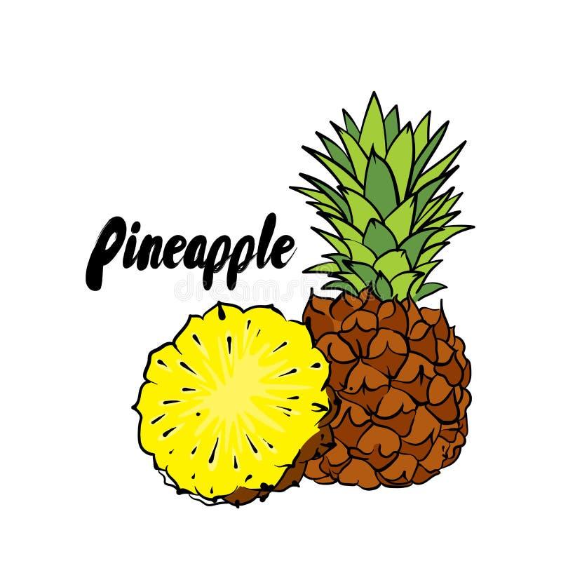 Mooie ananas Vector illustratie Tropische vruchten royalty-vrije illustratie