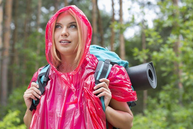 Mooie backpacker in regenjas die weg bos bekijken royalty-vrije stock afbeeldingen