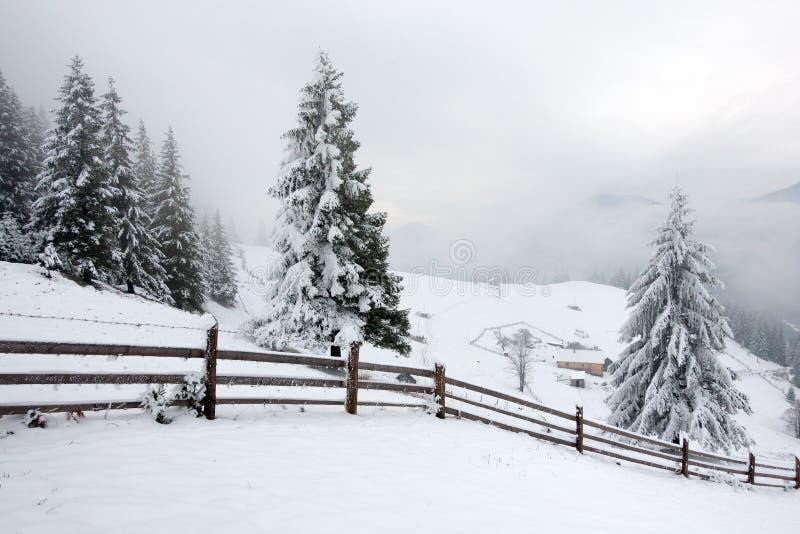 Mooie bergen in de winter Landelijke pezazh Bomen die met sneeuw worden behandeld Gelukkig Nieuwjaar stock foto