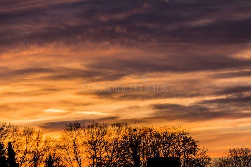 Mooie bewolkte die zonsondergang met wolken met een indrukwekkende roodachtige kleur met bomen op de achtergrond wordt getint royalty-vrije stock foto's