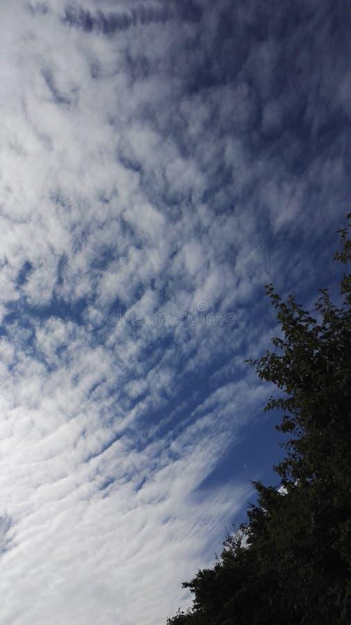 Mooie bewolkte hemel stock foto's