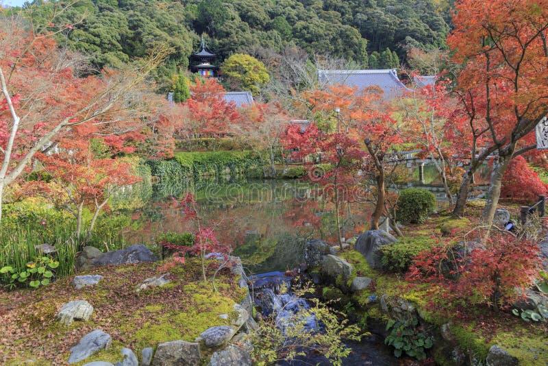 Mooie bezinning van Pagode en Autumn Colors over vijver van Japanse Boeddhismetempel genoemd daigo-Ji Tempel, Kyoto, Japan royalty-vrije stock foto