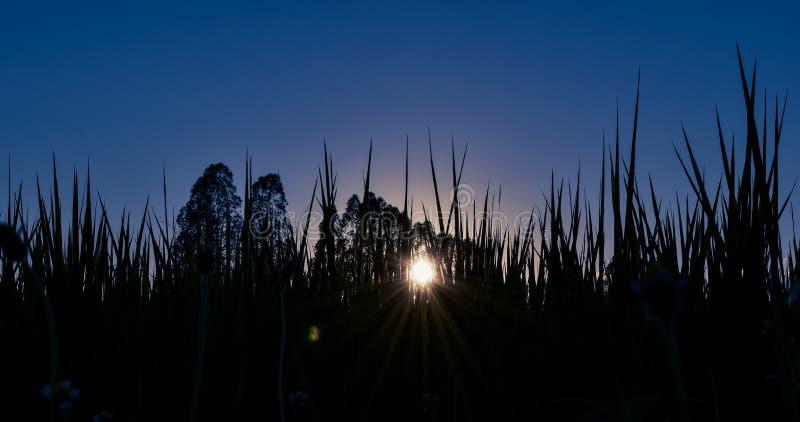 Mooie blauwe hemel en zonsondergang royalty-vrije stock afbeelding