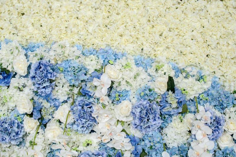Mooie bloem op de textuur van de bloemmuur Ontwerp voor huwelijk of valentijnskaartachtergrond in romantisch thema royalty-vrije stock afbeeldingen
