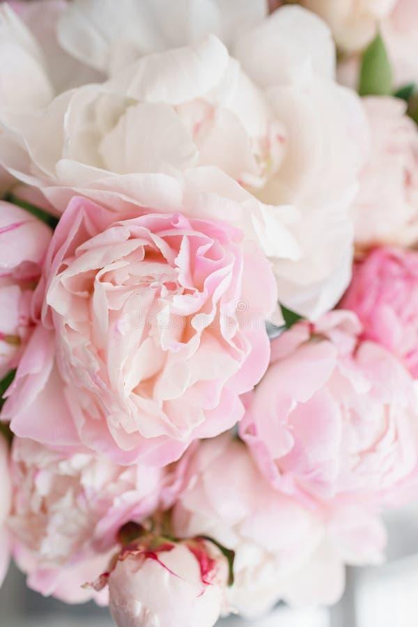 Mooie bloemen in glasvaas Mooi boeket van witte en roze pioenen Bloemensamenstelling, daglicht De zomer royalty-vrije stock foto's