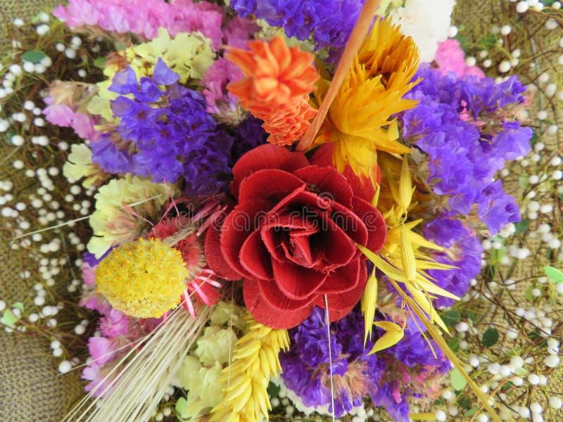 Mooie bloemen van intense kleuren en van grote schoonheid royalty-vrije stock afbeeldingen