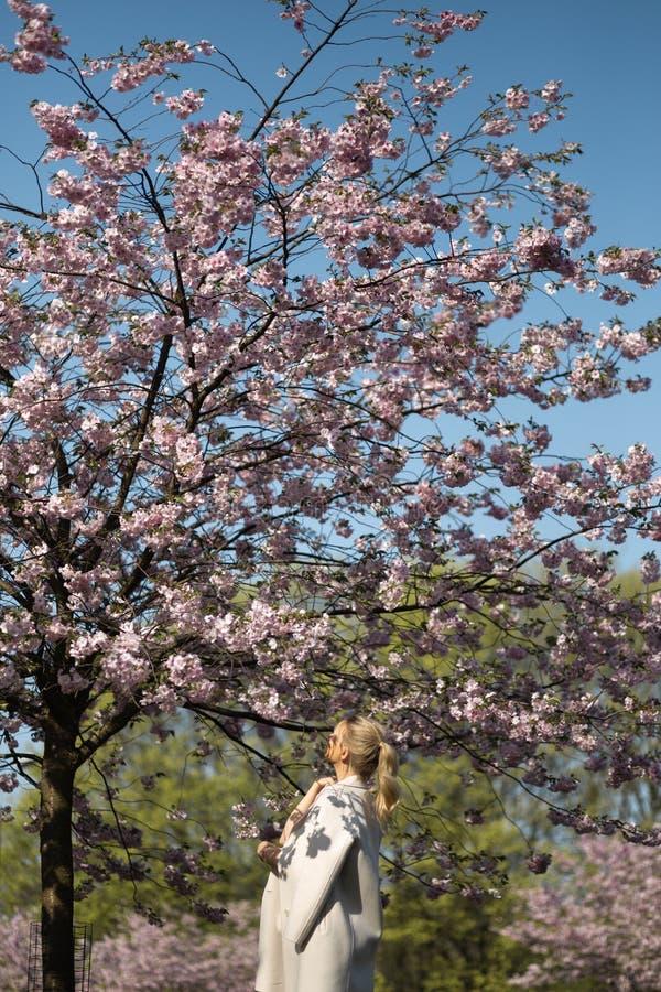 Mooie blonde jonge vrouw die in Sakura Cherry Blossom-park in de Lente van aard en vrije tijd genieten tijdens haar die reizen royalty-vrije stock afbeeldingen