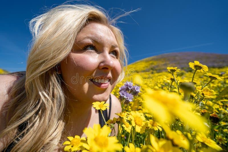 Mooie blonde vrouw op een geel wildflowergebied, die omhoog een blauwe hemel in de lente bekijken Genomen bij Carrizo Duidelijk N stock afbeeldingen