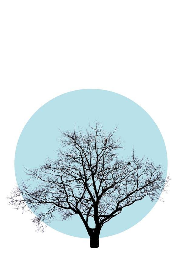Mooie boom in abstracte stijl op blauwe cirkel, die op witte achtergrond wordt geïsoleerd Groot ontwerp voor om het even welke do royalty-vrije illustratie