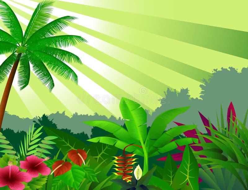 Mooie bosachtergrond vector illustratie