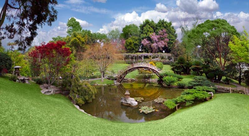 Mooie botanische tuin bij de Bibliotheek Huntington stock afbeeldingen