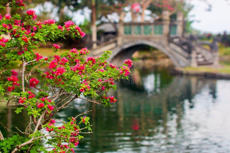 Mooie brug in koninklijk waterpaleis Tirta Gangga in Karangasem, Bali stock foto