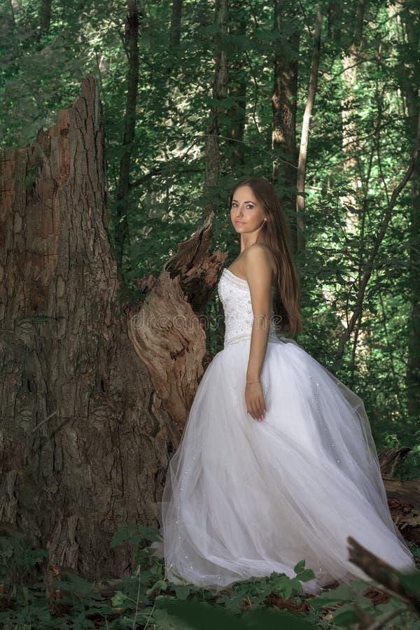 Mooie bruid in een dicht bos 2 stock afbeeldingen