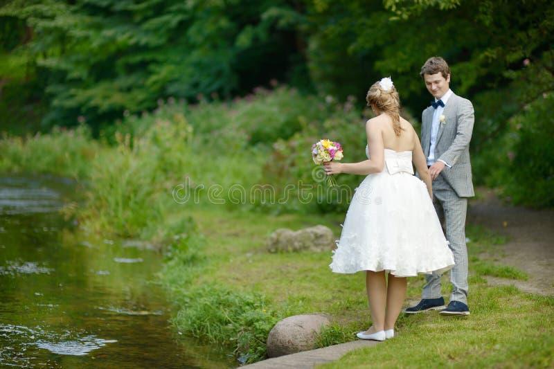 Mooie bruid en bruidegom in een park royalty-vrije stock afbeeldingen