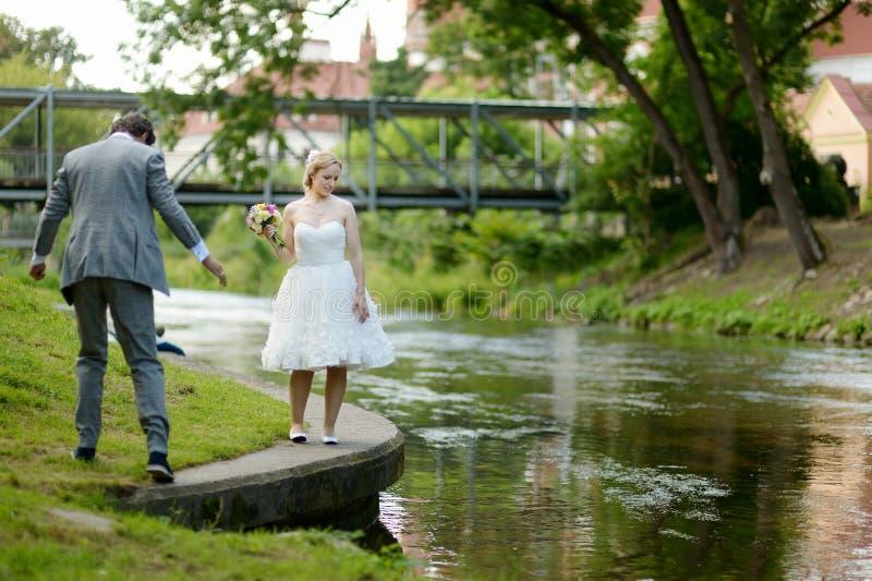 Mooie bruid en bruidegom in een park stock fotografie