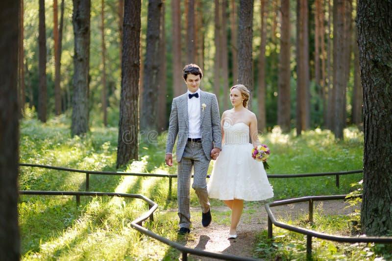 Mooie bruid en bruidegom in een park stock afbeelding