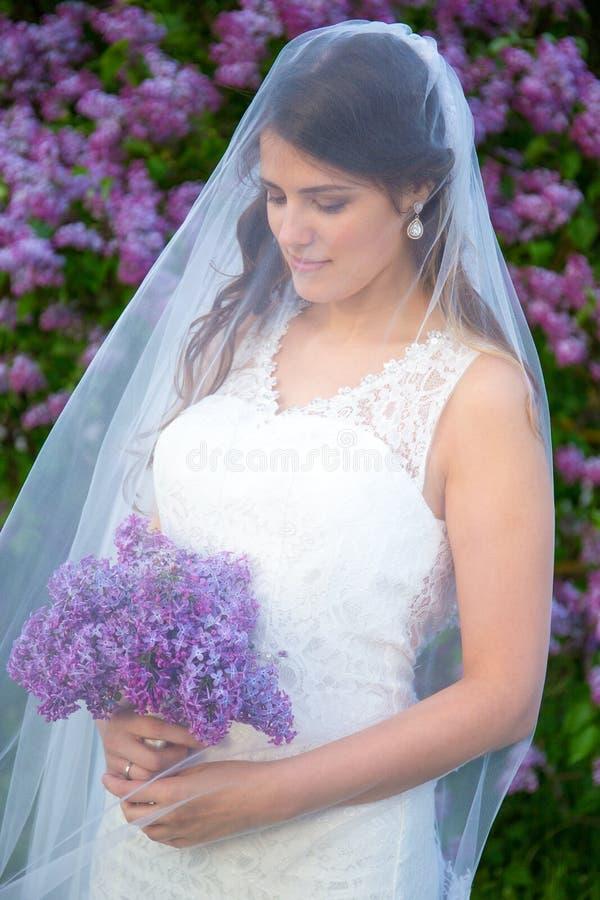 Mooie bruid met lange sluier die zich dichtbij bloeiende lilac boom bevinden royalty-vrije stock foto