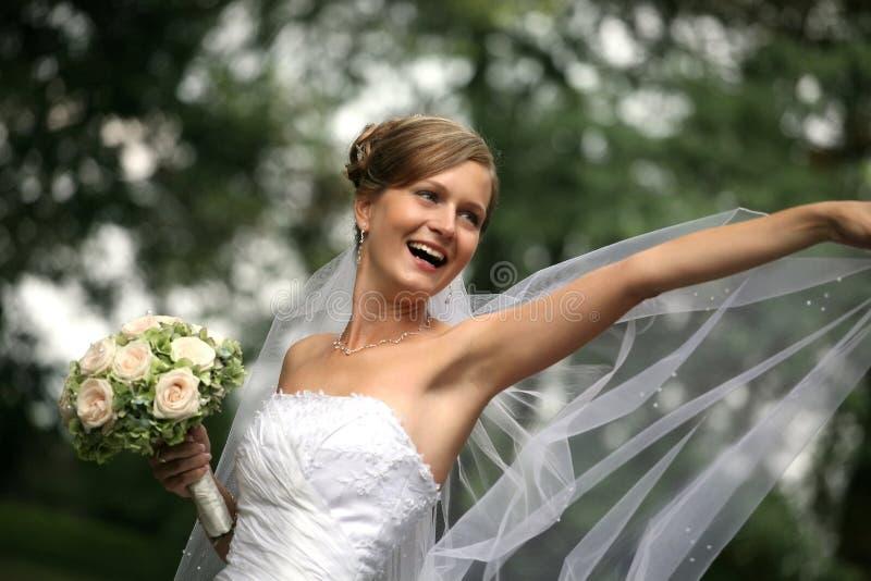 Mooie bruid met sluier royalty-vrije stock foto's