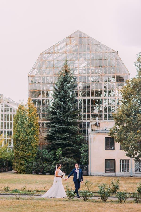 Mooie bruid met witte huwelijkskleding en bruidegom in het modieuze blauwe kostuum lopen openlucht in een park De grote serre is stock fotografie