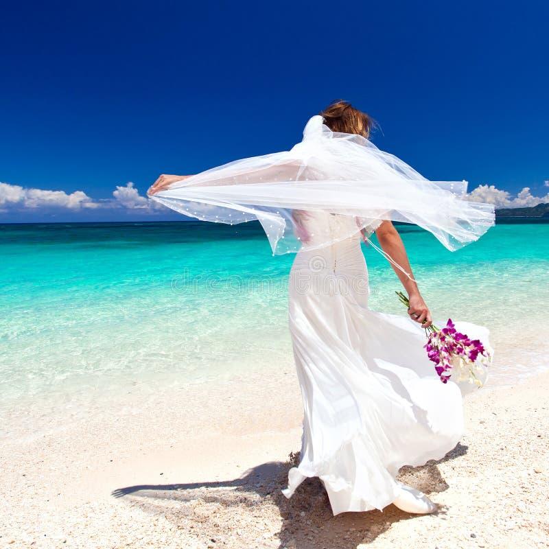 Mooie bruid op tropisch strand royalty-vrije stock afbeeldingen