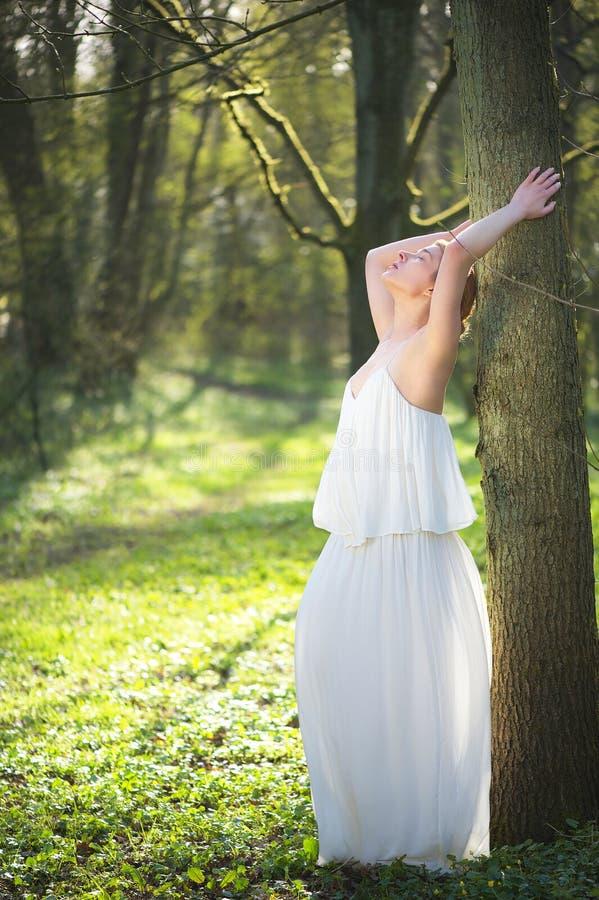 Mooie bruid in witte huwelijkskleding die tegen boom in openlucht leunen stock fotografie