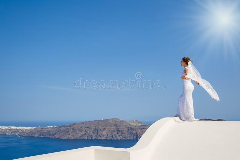 Mooie bruidtribunes op een hoog dak stock foto