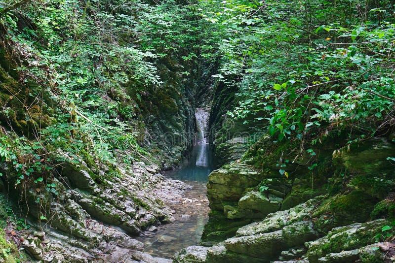 Mooie canion in het bos met een kalme rivier en een kleine waterval royalty-vrije stock afbeeldingen