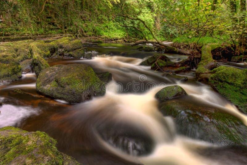 Mooie cascades van de Nauwe valleien van Clare - Ierland. royalty-vrije stock fotografie