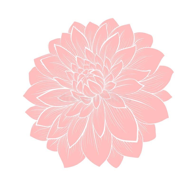 Mooie dahliabloem die op wit wordt geïsoleerd vector illustratie