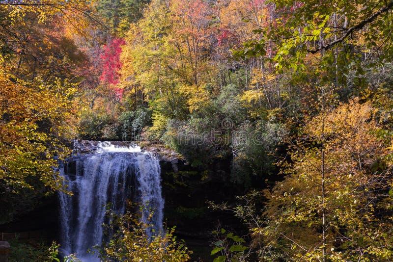 Mooie dalingskleuren bij Droge Dalingen van Hooglanden, Noord-Carolina stock fotografie