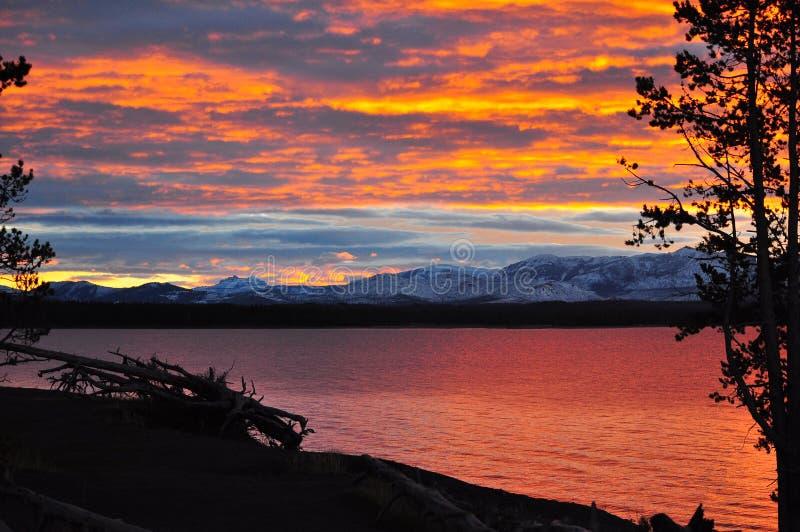 Mooie Dalingszonsopgang bij het Nationale Park van Yellowstone, Wyooming stock foto's
