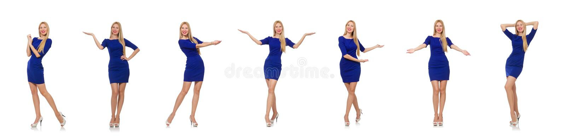 Mooie dame in donkerblauwe kleding die op wit wordt ge?soleerd royalty-vrije stock foto's