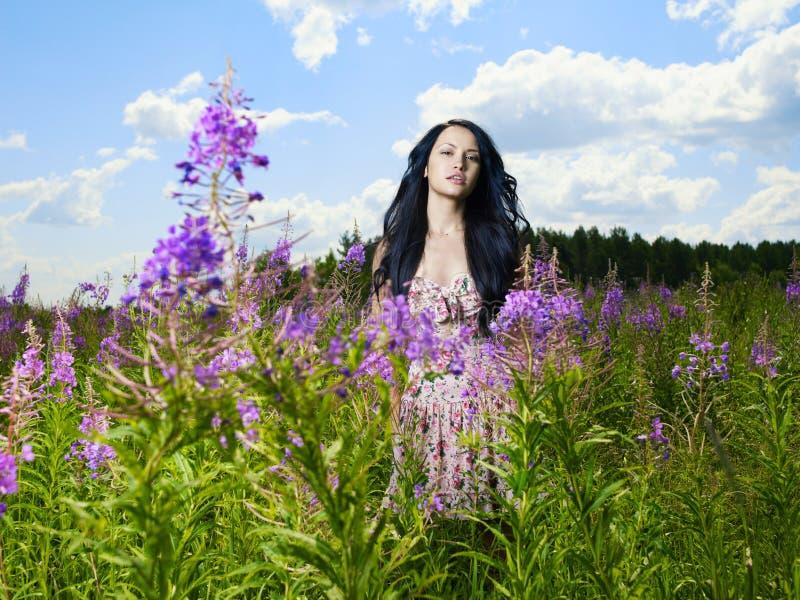Mooie dame in een bloemweide royalty-vrije stock foto