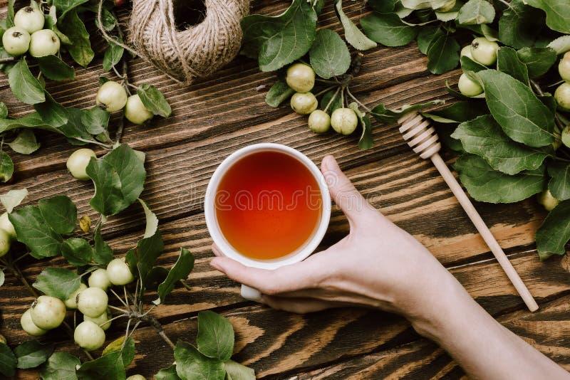 Mooie de herfst comfortabele flatlay met appelboom vertakt zich met rijpe vruchten, vrouwen` s handen die kop van warme thee houd stock fotografie