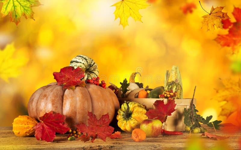 Mooie de herfstachtergrond stock afbeeldingen