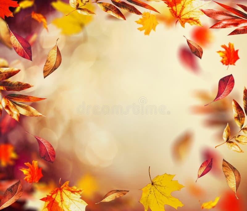 Mooie de herfstachtergrond met vliegende dalende kleurrijke bladeren en bokeh stock afbeeldingen
